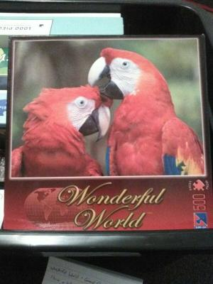 Puzzle Macaws