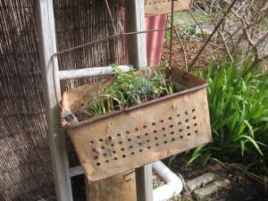 ANTIQUE Retro  Rustic Metal Tins Baskets Crates Pl