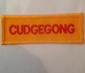 NSW Rural fire Services Cudgegong Embroidered Patch